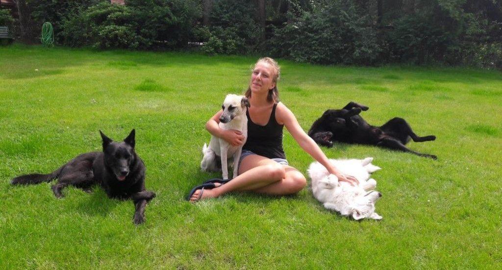 10 Fakten über mich - Hundesitting